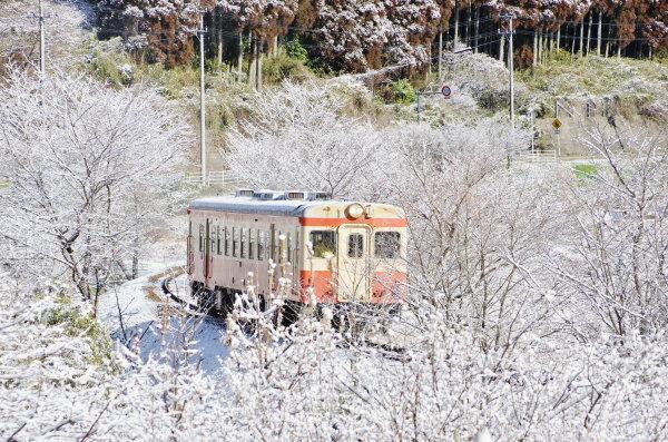 いすみ鉄道 キハ52−125