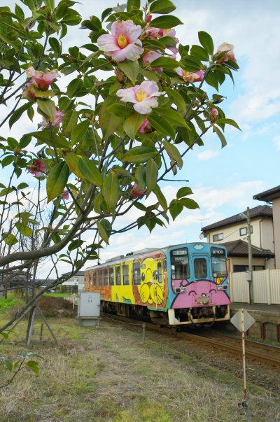 ひたちなか海浜鉄道 椿