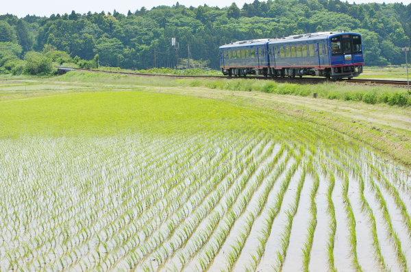 のと鉄道〜第1崎山踏切