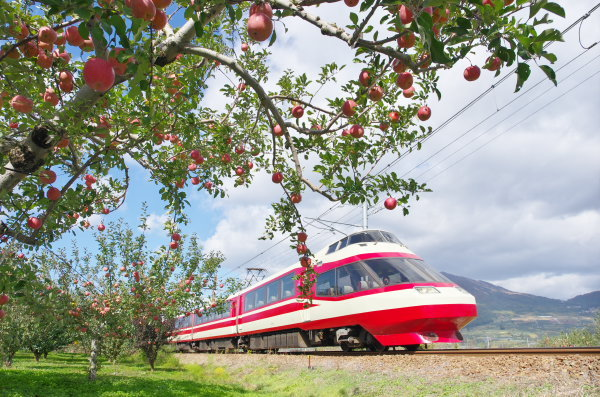 リンゴと長野電鉄特急ゆけむり