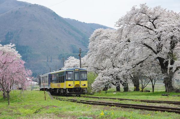 桜〜会津鉄道