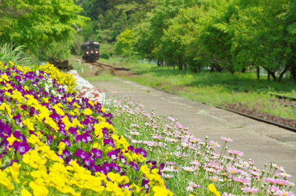 花いっぱいの上神梅駅