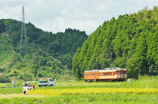稲刈りの頃〜いすみ鉄道