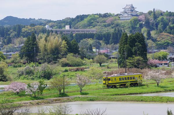 新緑の頃〜いすみ鉄道