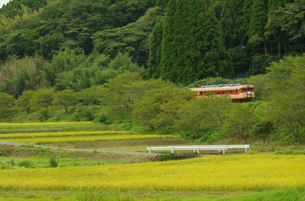 初秋の風景〜いすみ鉄道