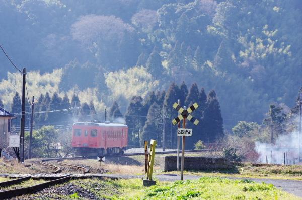 キハ52単行〜いすみ鉄道