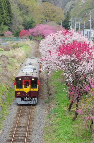 神戸・花桃まつり〜わたらせ渓谷鉄道