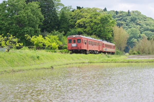 緑の風景〜いすみ鉄道