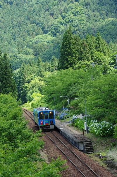 紫陽花〜会津鉄道
